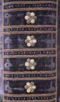 DA (1608) Rug