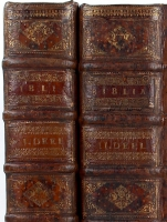 *Keur (1686) Ruggen