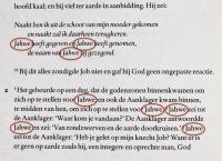 Job-Fokkelman-2009-2