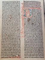 Delftse-Bijbel